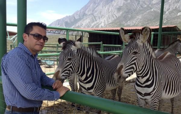 Venta de fauna exótica y nativa